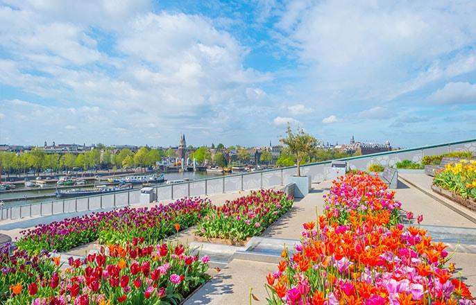 jardin-centre-amsterdam