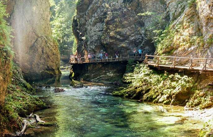gorge-vintgar-slovenie