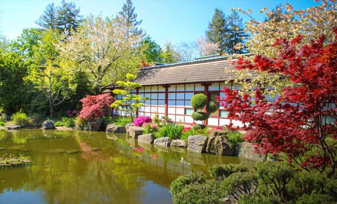 jardin-japonais-ile-versailles-nantes
